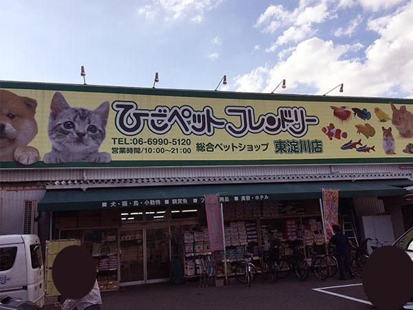 東淀川区のペットショップ ひごペットフレンドリー